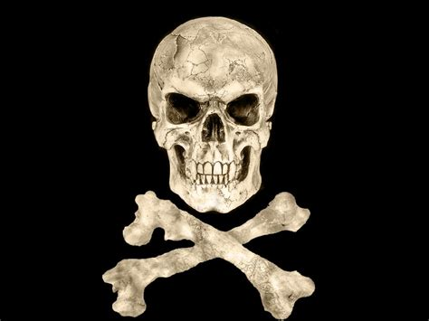 and bone skull and bones cake ideas and designs