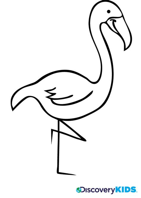flamingo coloring page preschool coloring pages