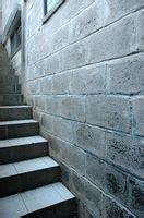 how to remove prevent mold mildew on concrete block