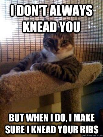 Make Your Own I Dont Always Meme - i don t always knead you but when i do i make sure i