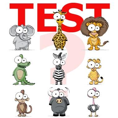 test animale sei test animale sei