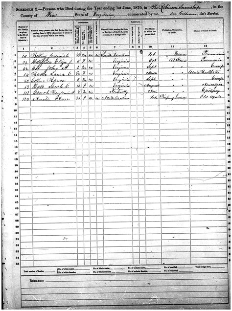 Wise County Va Records 1870 Deaths From The Wise County Virginia Federal Census