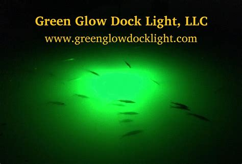 green glow dock light green glow dock light snook lights fishing light dock