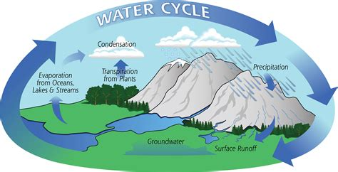a diagram of the water cycle the water cycle precipitation education