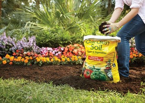 latest tips  trends   perfect gardening space