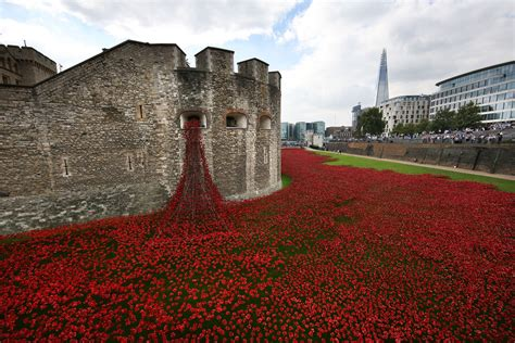 tower  london poppies ebay launches crackdown  users
