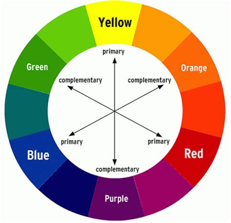 color circle the color circle