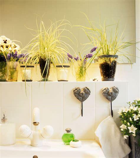 piante da bagno piante bagno fiori idee per il design della casa