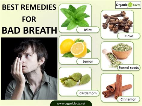 12 wonderful home remedies for bad breath halitosis