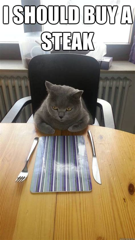 bring   feast     fancy hungry cat