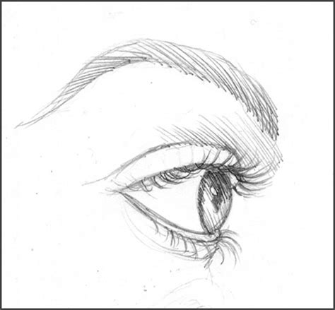 easy sketches tutorial on how to draw eyelashes
