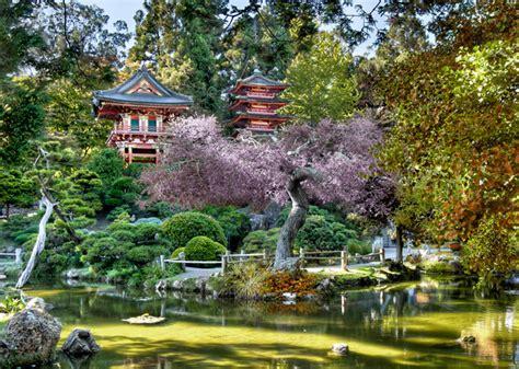Amazing Japanese Tea Garden Hayward #5: P1543989892-3.jpg