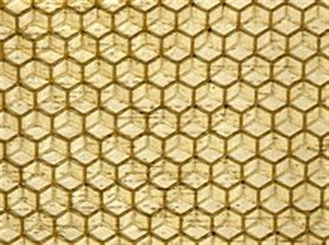 honeycomb pattern roller beeswax wikipedia