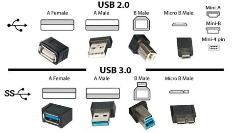 usb 2 0 in 3 0 differenza c 232 tra usb 2 0 3 0 e type c 3 1 wizblog