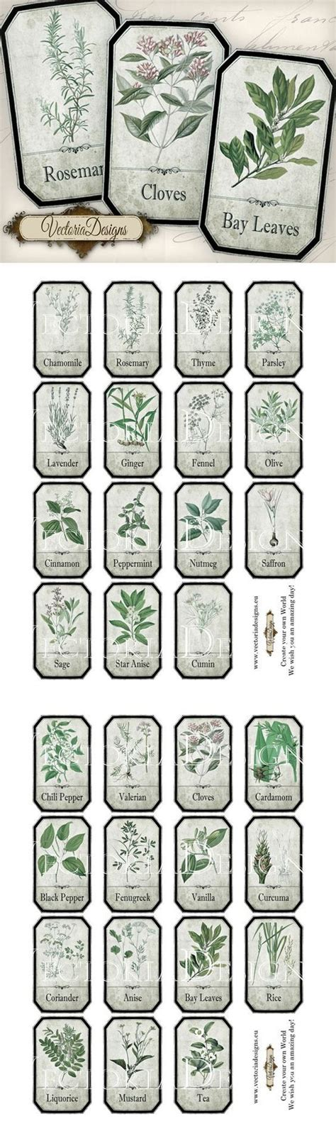 printable herb labels printable shabby herbal labels by vectoriadesigns