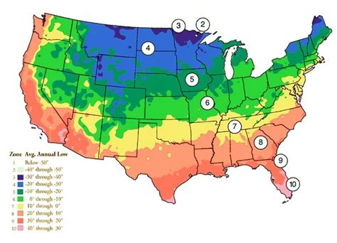 zones for gardening map plant hardiness zone map gardens