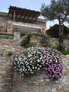 mediterranean garden house plant list