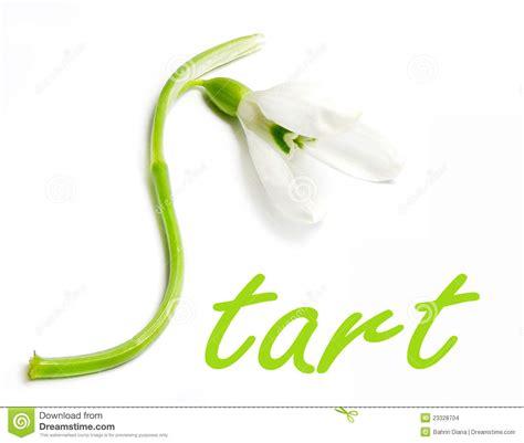 spring start start for spring stock photo image of word type green