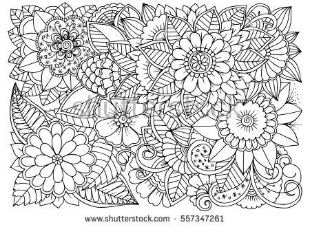 color pattern drawing floral design elements doodle flowers zentangle stock
