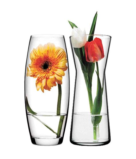 pasabahce glass gardenia flower vase set of 2 buy
