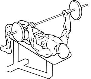 chris davis bench press decline bench press how to work your lower chest pop