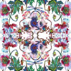 Pasmina Sofia Flower 1000 images about sofia perina miller watercolors on watercolors hydrangeas and