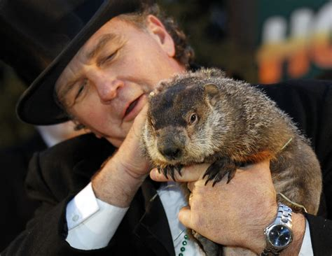 groundhog day from a complaint letter to punxsutawney phil the