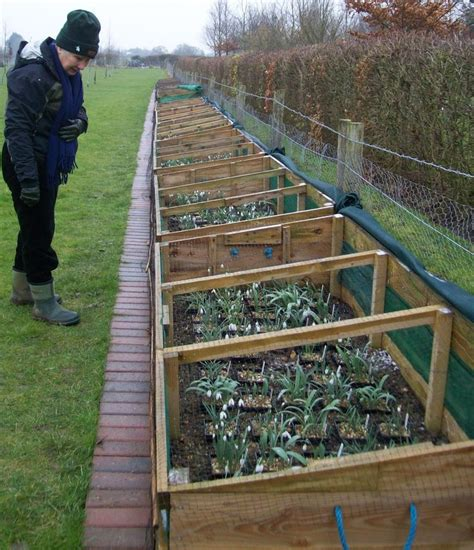 Raised Bed Cold Frame 78 Best Images About Garden Cold Frames On Gardens Raised Beds And