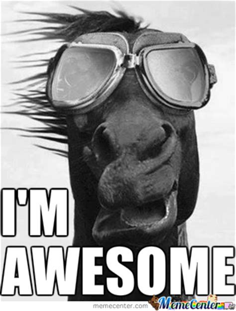 Im Awesome Meme - quot i m awesome quot meme 1 by karim moustafaelaraby meme center