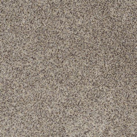 lowes in papillion stainmaster trusoft carpet 28 images shop stainmaster