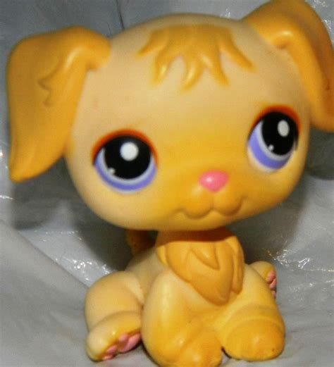 golden retriever shop 14 best lps houses images on lps houses littlest pet shops and lps