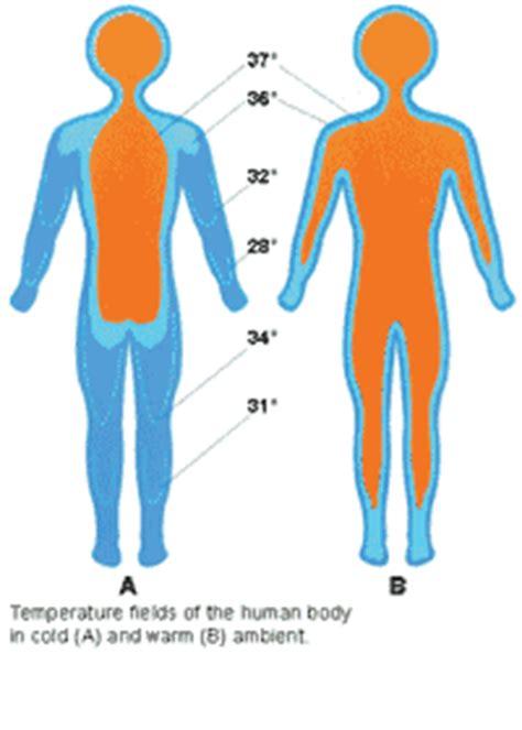 temperatura interna corporea primeros auxilios guardavidas org