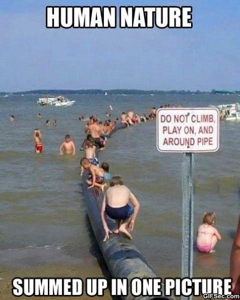 Funny Beach Memes - human and nature funny meme and funny gif from gifsec com
