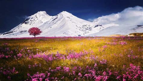 imagenes de paisajes naturales lindos descubre verdaderas imagenes de hermosos paisajes del