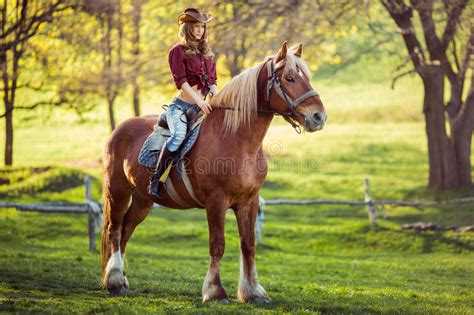 commercial girl riding horse beautiful girl riding horse on summer field stock photo