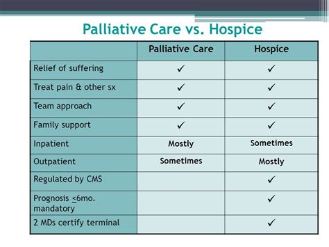 hospice vs comfort care palliative medicine and hospice when comfort is the goal