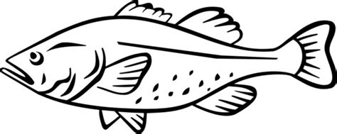 cooked fish coloring page free coloring pages of cooked fish