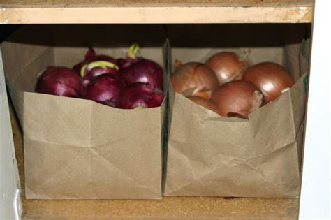 Shelf Of Onions by How To Store Onions And Potatoes All