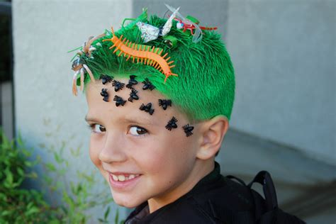 pictures of insects for kids hairstyle crazy hair day ideas the idea room