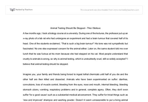 animal essay write about something that s important animal rights