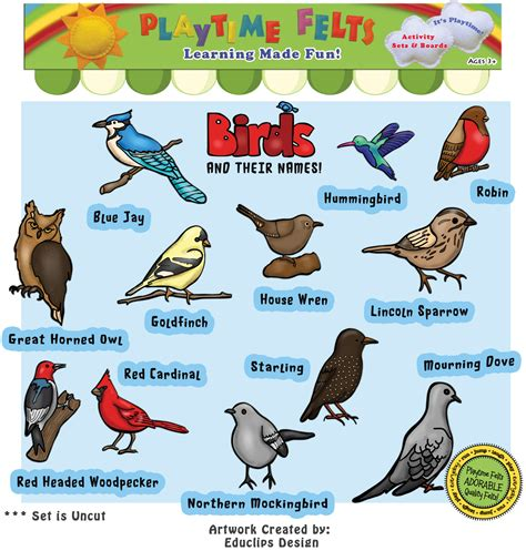 birds and their names felt set for flannel board uncut