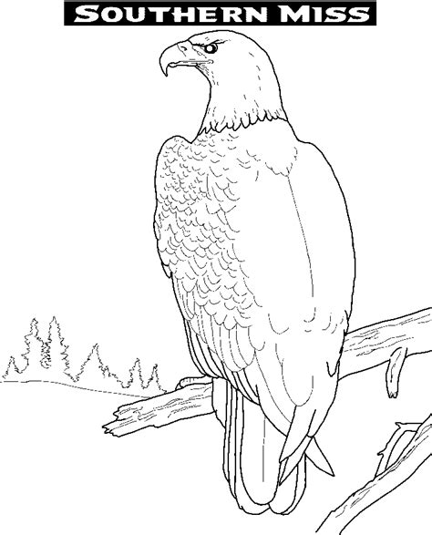 coloring page golden eagle golden eagle coloring page coloring home