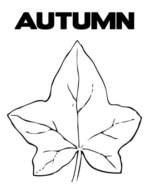 printable coloring pages autumn leaves leaves coloring