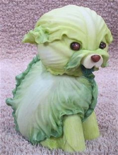 can dogs cabbage 1000 images about fruit vegetables figurines on vegetables home and