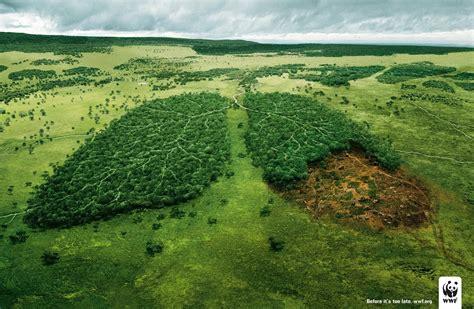 imagenes justicia ambiental colegiado ambiental presentan atlas global sobre