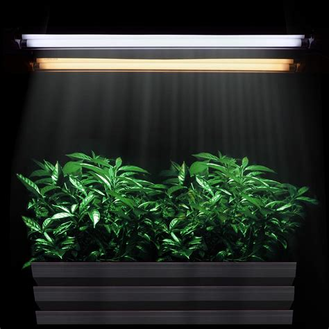 t5 fluorescent grow 2ft t5 grow light hydroponic 24 quot fluorescent tube veg
