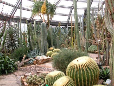 botanischer garten und museum berlin preise 214 ffnungszeiten botanischer garten und botanisches