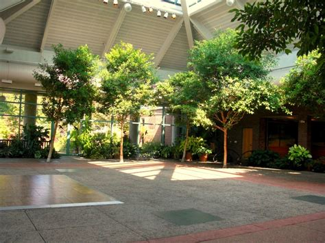 Atrium At Meadowlark Botanical Gardens Another Indoor Garden Venue Ideas Pinterest