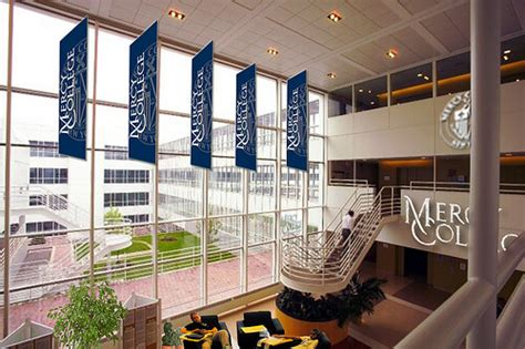 Is Mercy College Mba Program Accredited by 30 Best Bachelor S In Degrees 2018