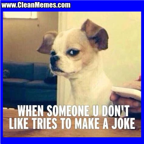 Hilarious Clean Memes - funny clean memes pictures to pin on pinterest pinsdaddy